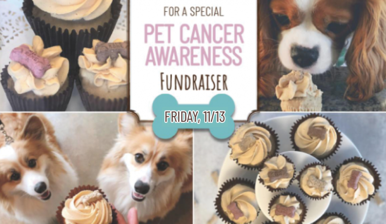 This Friday, November 13th – Buy Some PupCakes, and Save Some Pups!